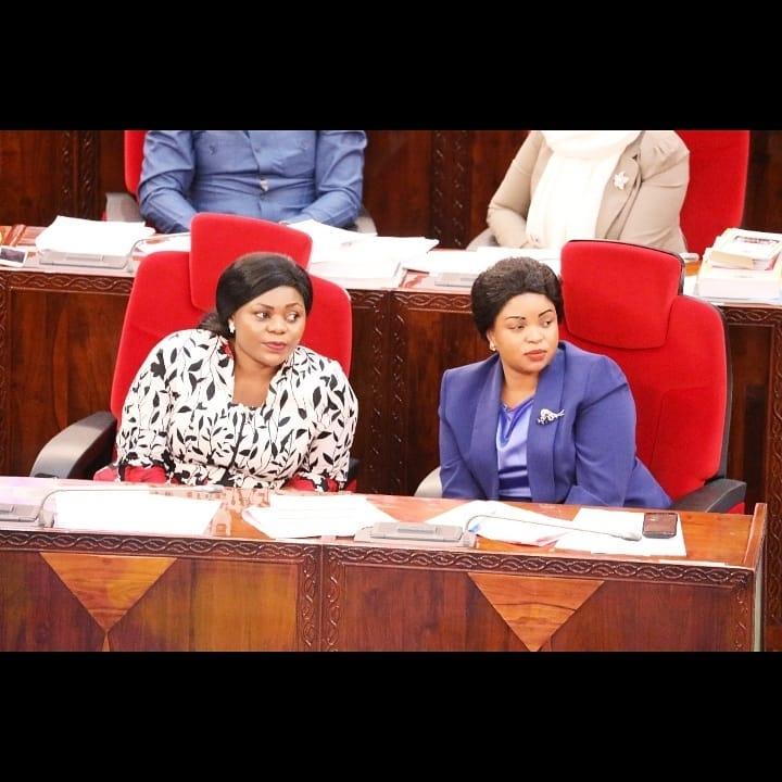 Video: Tanzanian MP Jesca Kishoa in Love With Joyce Blessing's 'I